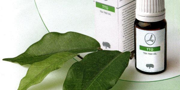 Масло чайного дерева для лица: рецепты масок и лосьонов