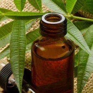 Льняное масло для женского организма: польза и вред, правила приема и советы по выбору
